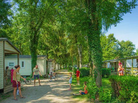 Camping Le Ried   - Camping Bas-Rhin - Image N°23