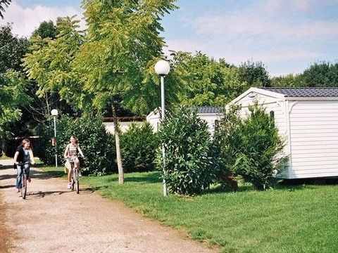 Camping Le Ried   - Camping Bas-Rhin - Image N°24