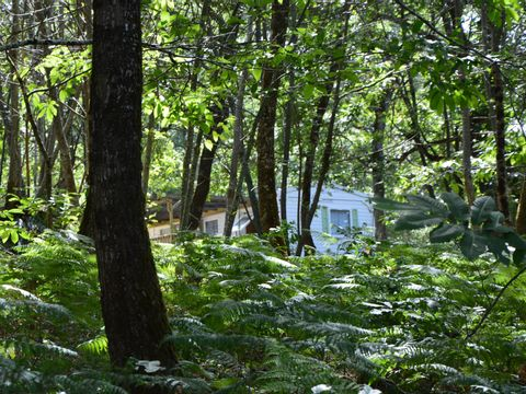 Camping de L'Etang Vallier - Camping Charente - Image N°10