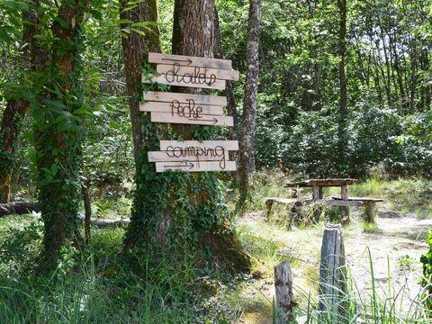 Camping de L'Etang Vallier - Camping Charente - Image N°5