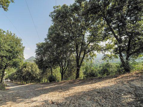 Camping La Liscia  - Camping Corse - Image N°4