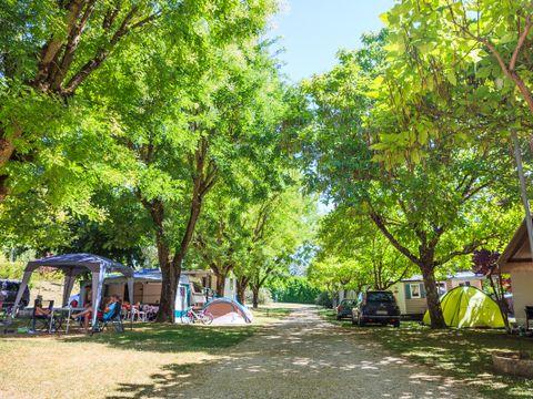 Camping Le Soleil des Bastides - Camping Tarn - Image N°5