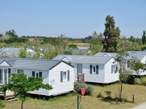 Camping Les Fontaines - Camping Pyrenees-Orientales - Image N°9