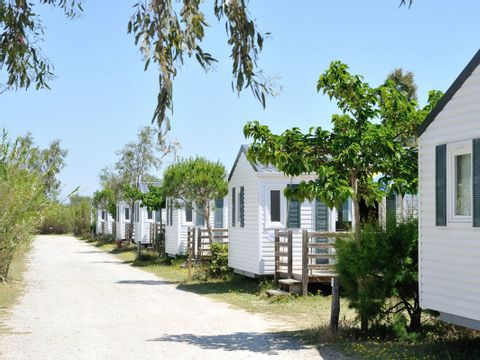 Camping Les Fontaines - Camping Pyrenees-Orientales - Image N°8