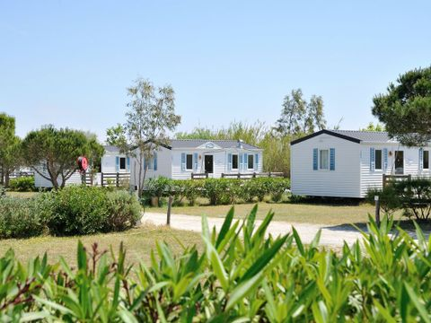 Camping Les Fontaines - Camping Pyrenees-Orientales - Image N°10