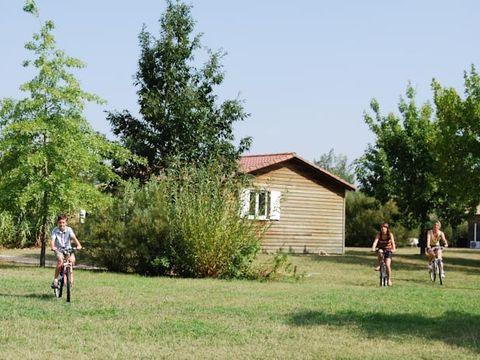 Village Vacances Port Lalande - Camping Lot-et-Garonne - Image N°9