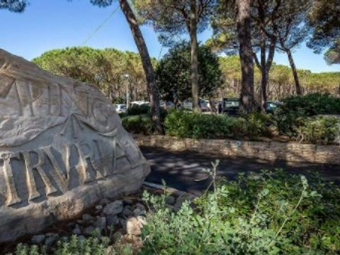Camping Etruria - Camping Livourne - Image N°15
