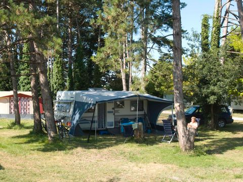 Camping Le Pas Des Biches - Camping Charente-Maritime - Image N°5