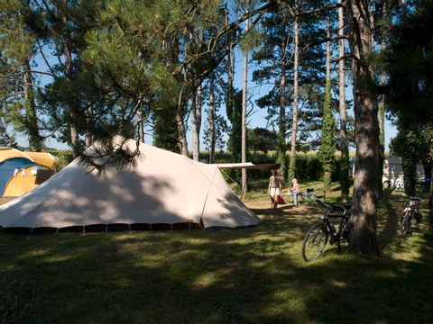 Camping Le Pas Des Biches - Camping Charente-Maritime - Image N°6
