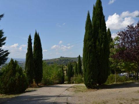 Camping Panorama Del Chianti  - Camping Florence - Image N°8