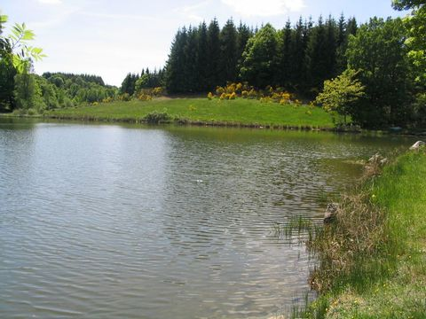 Camping de l'Etang - Camping Cantal - Image N°6