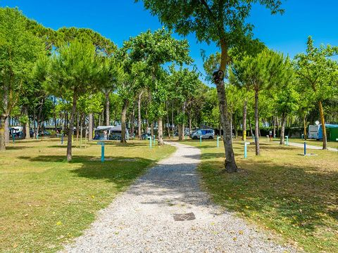 Camping Marina Di Venezia - Camping Venise - Image N°50
