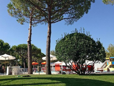 Camping Italy Camping Village - Camping Venise - Image N°4
