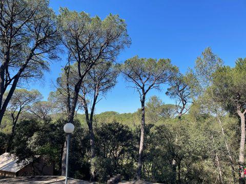 Camping Le Mas de Reilhe - Camping Gard - Image N°28