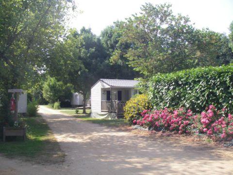Camping Les portes de l'Anjou - Camping Maine-et-Loire - Image N°7
