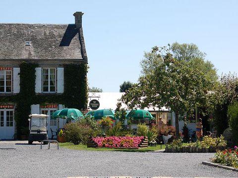 Camping La Reine Mathilde - Camping Calvados - Image N°12