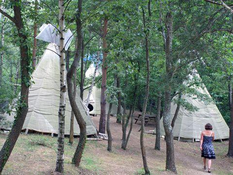 Camping Des Randonneurs - Camping Pyrenees-Orientales - Image N°6