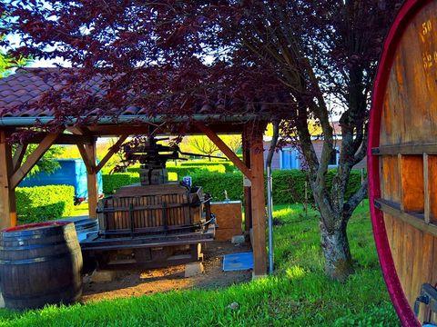 Camping La Grappe Fleurie - Camping Rodano - Image N°8