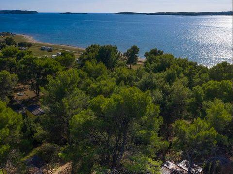 Camping Kamp Pineta - Camping Istrie - Image N°4
