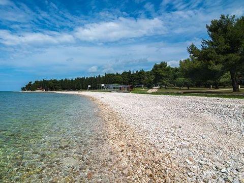 Camping Kamp Pineta - Camping Istrie - Image N°9
