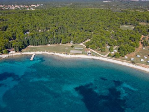 Camping Kamp Pineta - Camping Istrie - Image N°2