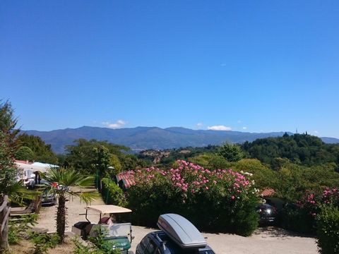Camping Norcenni Girasole - Camping Florence - Image N°25