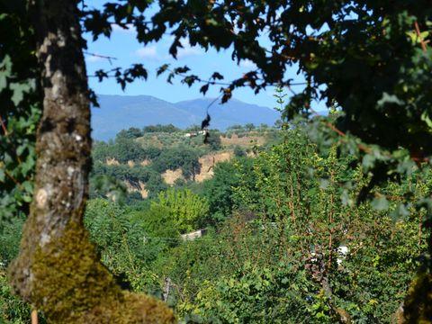 Camping Norcenni Girasole - Camping Florence - Image N°44
