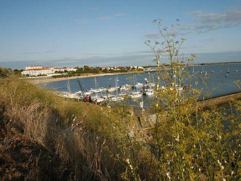 Résidence Les Terrasses de Fort Boyard - Camping Charente-Maritime - Image N°9