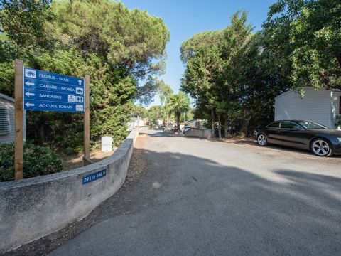 Camping Le Fréjus    - Camping Var - Image N°14