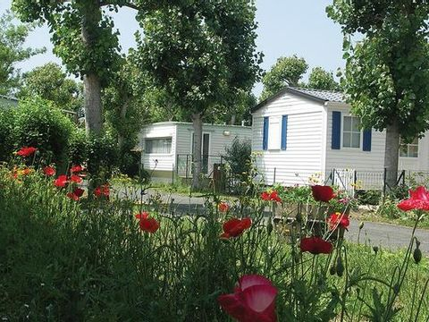 Camping Le Maine - Camping Charente-Maritime - Image N°9