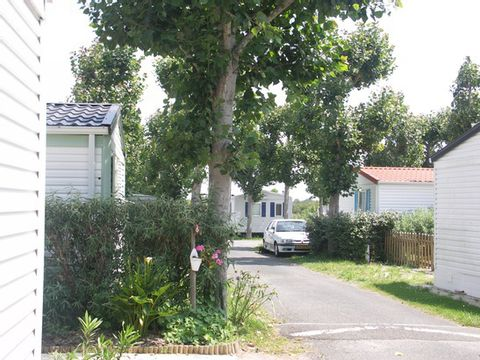 Camping Le Maine - Camping Charente-Maritime - Image N°10