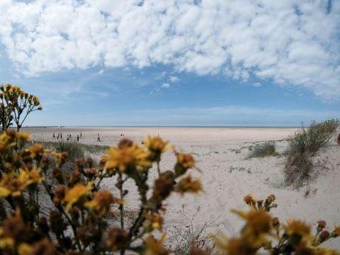 Camping des Dunes - Camping Nord - Image N°16