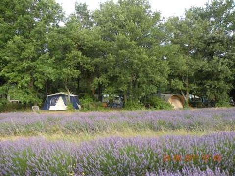 Camping Les Truffières - Camping Drome - Image N°3