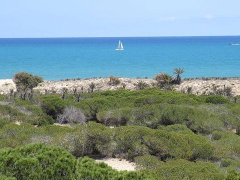Camping Alannia Guardamar - Camping Alicante - Image N°35