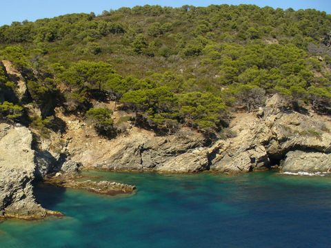 Camping Les Iles D'or - Camping Var - Image N°10