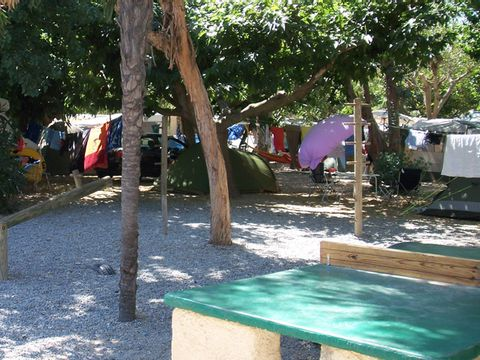 Camping Les Iles D'or - Camping Var - Image N°3
