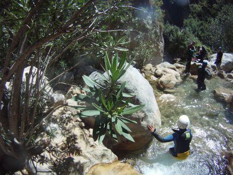 Camping Castillo de Banos - Camping Grenade - Image N°11