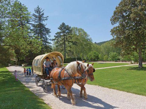 Domaine Chateau Laval - Camping Alpes-de-Haute-Provence - Image N°10