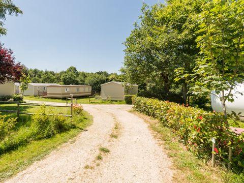 Camping Les Cerisiers - Camping Morbihan - Image N°2