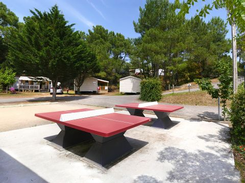Camping La Ventouse - Camping Vendée - Image N°3