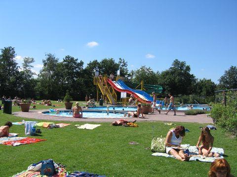Noord-Beveland  Vakantiepark De Schotsman - Camping Noord-Beveland - Afbeelding N°9