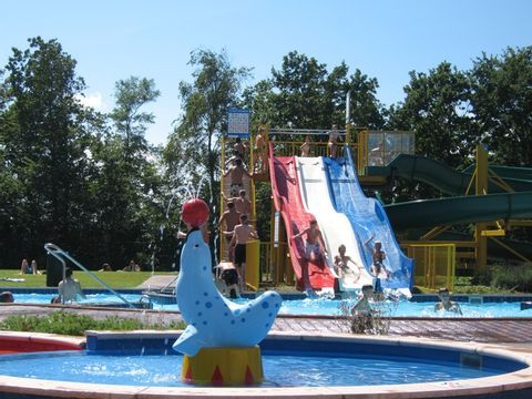 Noord-Beveland  Vakantiepark De Schotsman - Camping Noord-Beveland - Afbeelding N°40