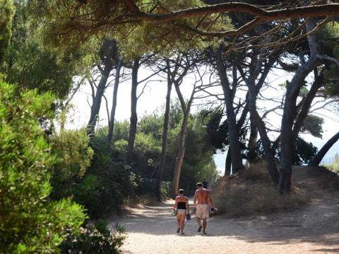 Camping le Méditerranée - Camping Var - Image N°3