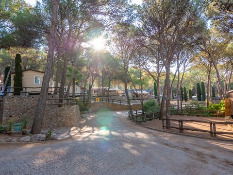 Camping Castell Montgri - Camping Girona - Image N°17