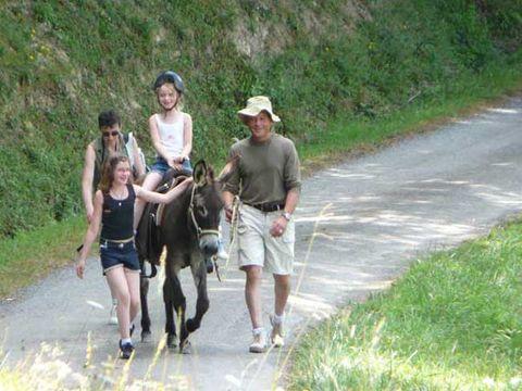 Camping les Chalets de Pierretoun - Camping Pyrenees-Atlantiques - Image N°10