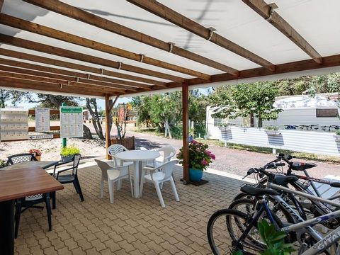 Camping La Perroche Plage - Camping Charente-Maritime - Image N°21