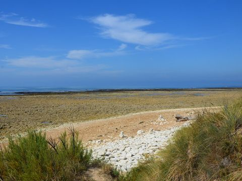 Camping La Perroche Plage - Camping Charente-Maritime - Image N°24