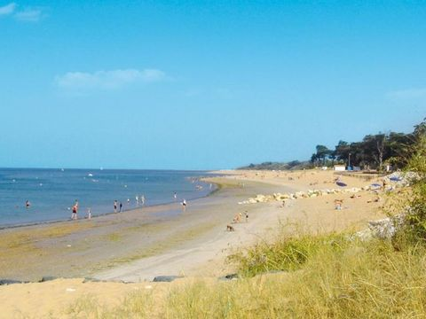 Camping Antioche d'Oléron - Camping Charente-Maritime - Image N°25