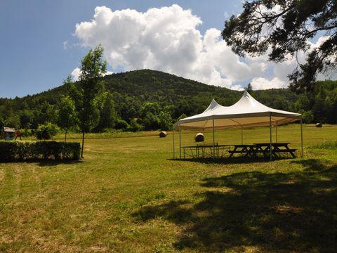 Camping La Pierre de L'Aigle  - Camping Alpes-de-Haute-Provence - Image N°12