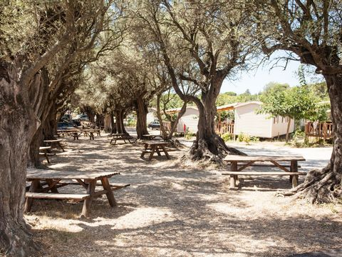 Camping La Baie des Anges - Camping Bouches-du-Rhone - Image N°19